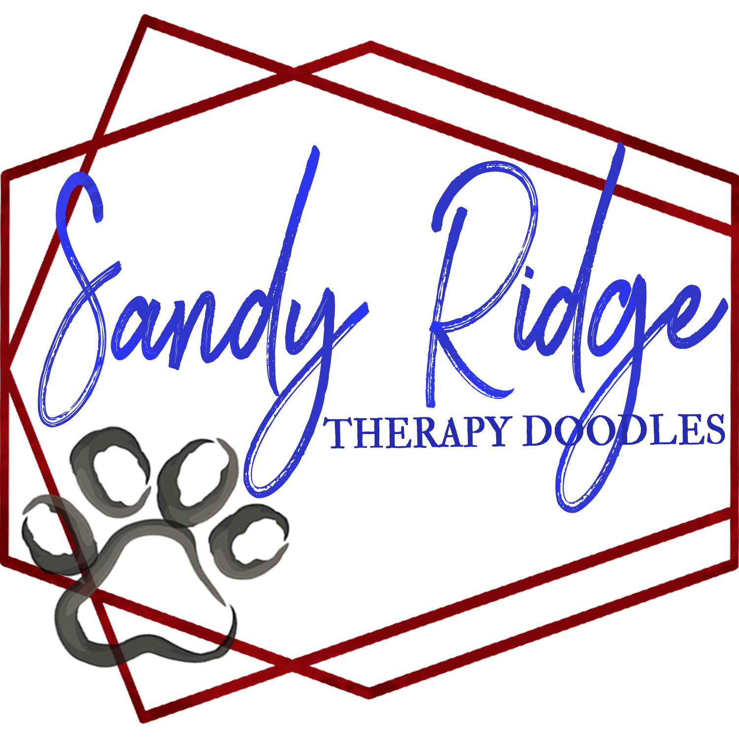 Ausiedoodles Bernedoodles And Poodles Sandy Ridge Therapy